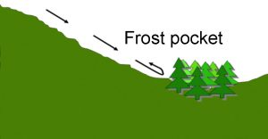 diagram of a frost pocket