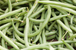green beans; photo by Edwin Remsberg, USDA