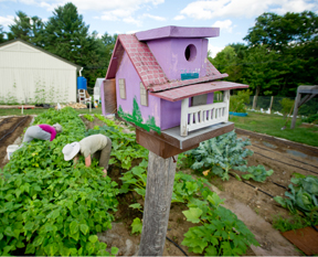 bird house in vegetable garden; photo by Edwin Remsberg
