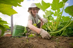 woman weeding vegetable garden; photo by Edwin Remsberg