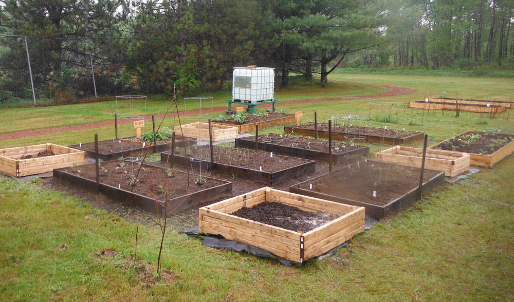 Raised beds by Dennis Connelly