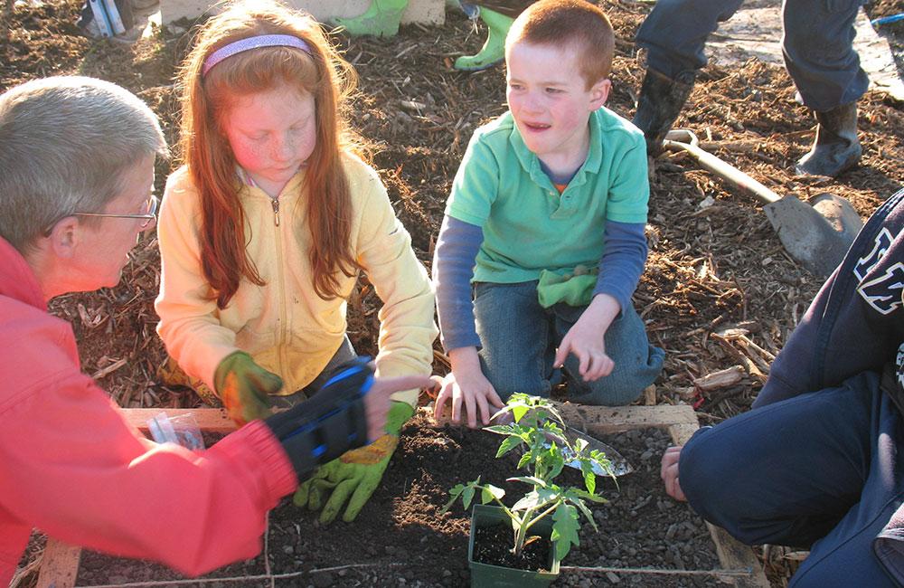 Kids Can Grow
