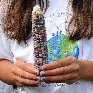 Kids Can Grow participant holds an ear of gem corn