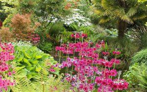 The Secret Garden, Blenheim Palace, Woodstock, Oxfordshire, UK.
