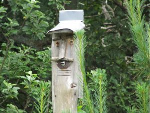 birdhouse on a post in the garden