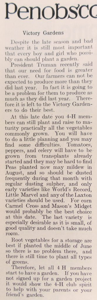 newsclipping from Penobscot 4-H Notes: Victory Gardens, The Penobscot County Farm Bureau News, Bangor, Maine, June 1945.