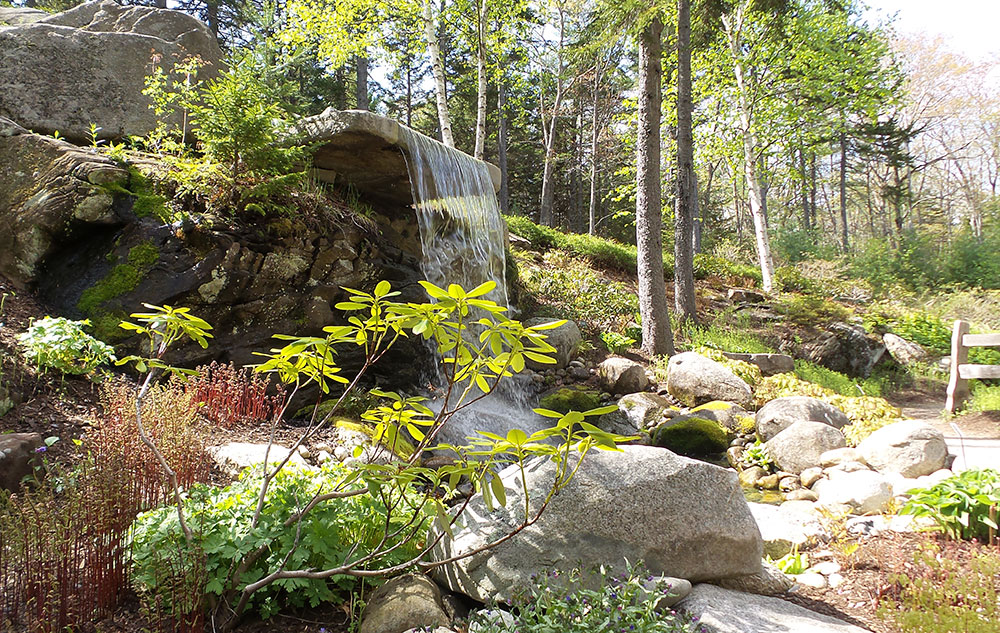 Maine Home Garden News June 2016 Cooperative Extension Garden Yard University Of Maine