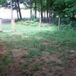 Fenced-in yard with sandy soil and sparse grass