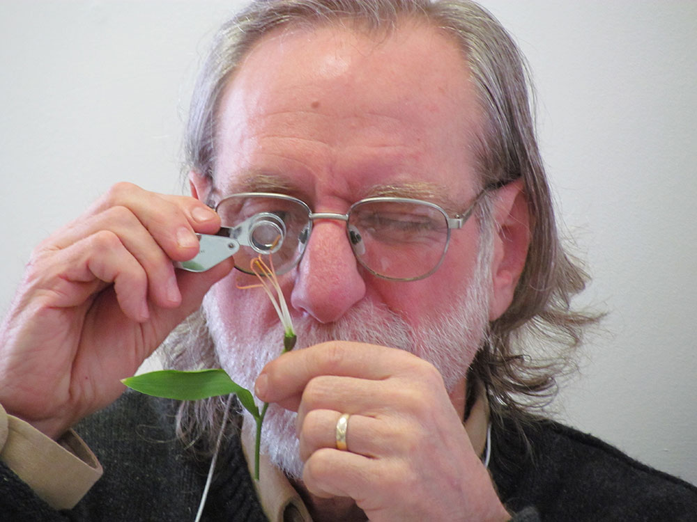 Master Gardener course participant Tony Aman examines the reproductive parts of a flower in Basic Botany.