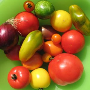 mixed fresh vegetables for salsa