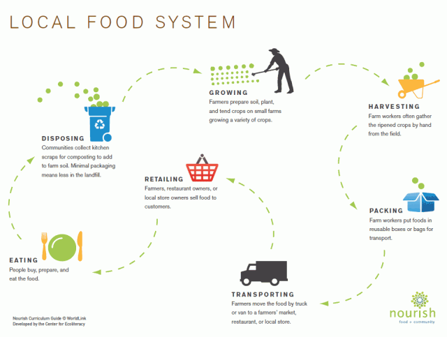 Local Food System infographic: Growing, Harvesting, Packing, Transporting, Retailing, Eating, Disposing.