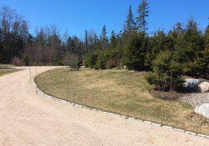 big, empty lawn along a residential driveway