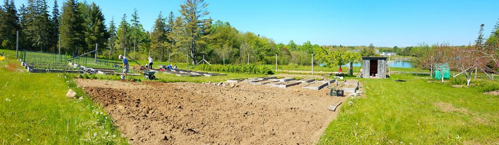 Blueberry Cove Gardens getting prepped for planting