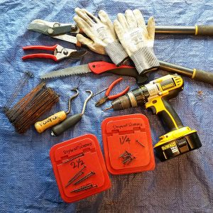 tape measure, pruning saw, hand pruners, loppers, gloves, and band aids