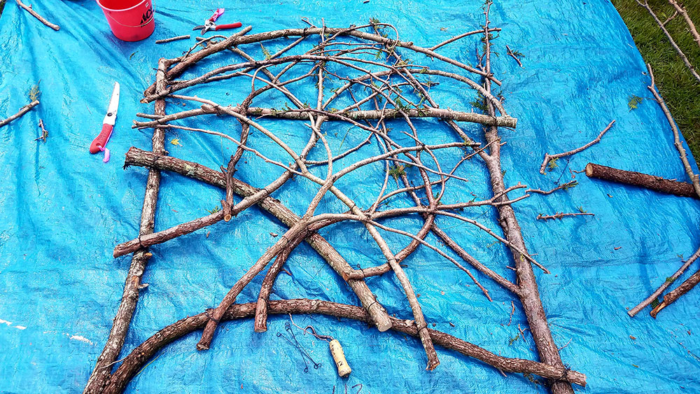 Filling in the Twiggy Trellis with additional branches