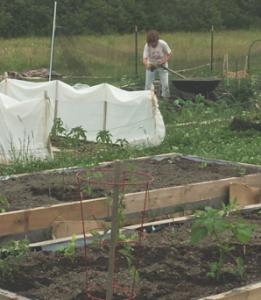 MGV prepare the Garden in Spring.