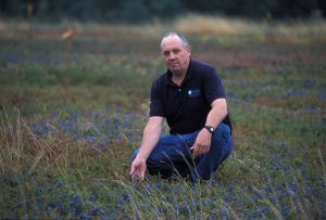 David Yarborough in a blueberry field