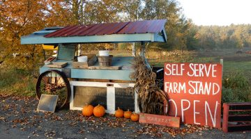 self-serve farm stand