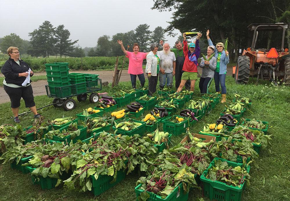 Master Gardener Volunteers with fresh produce gleaned from Spiller Farm in Wells, Maine