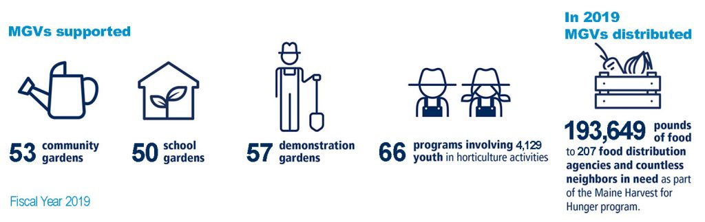 Illustration showing: MGVs supported 53 community gardens; 50 school gardens; 57 demonstration gardens; 66 programs involving 4,129 youth in horticulture activities; and in 2019 MGVs distributed 193,649 pounds of food to 207 food distribution agencies and countless neighbors in need as part of the Maine Harvest for Hunger program.