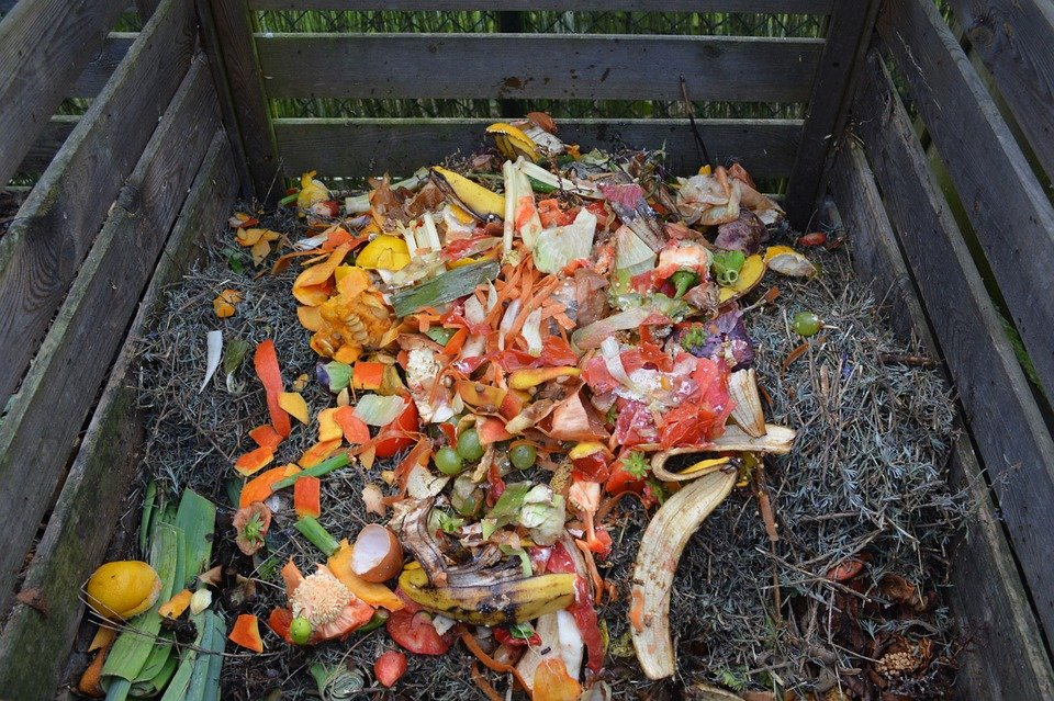 featured image for Episode 10: Preparing Your Garden for Winter