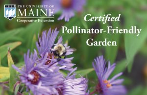 Example of UMaine Extension's Certified Pollinator-Friendly Garden Sign