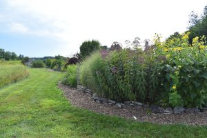 Gardens at Tidewater Farm in Falmouth
