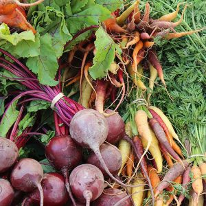 freshly harvested beets and carrots