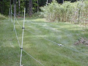 An electric fence