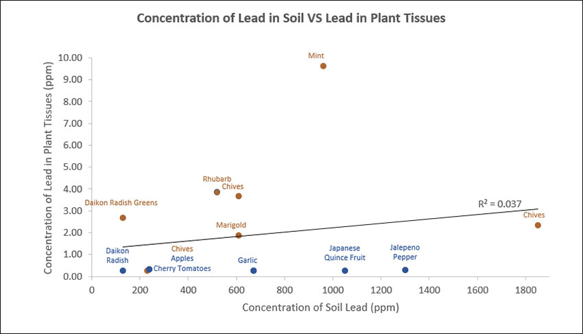 Graph showing the concetration of lead in soil versus lead in plant tissues