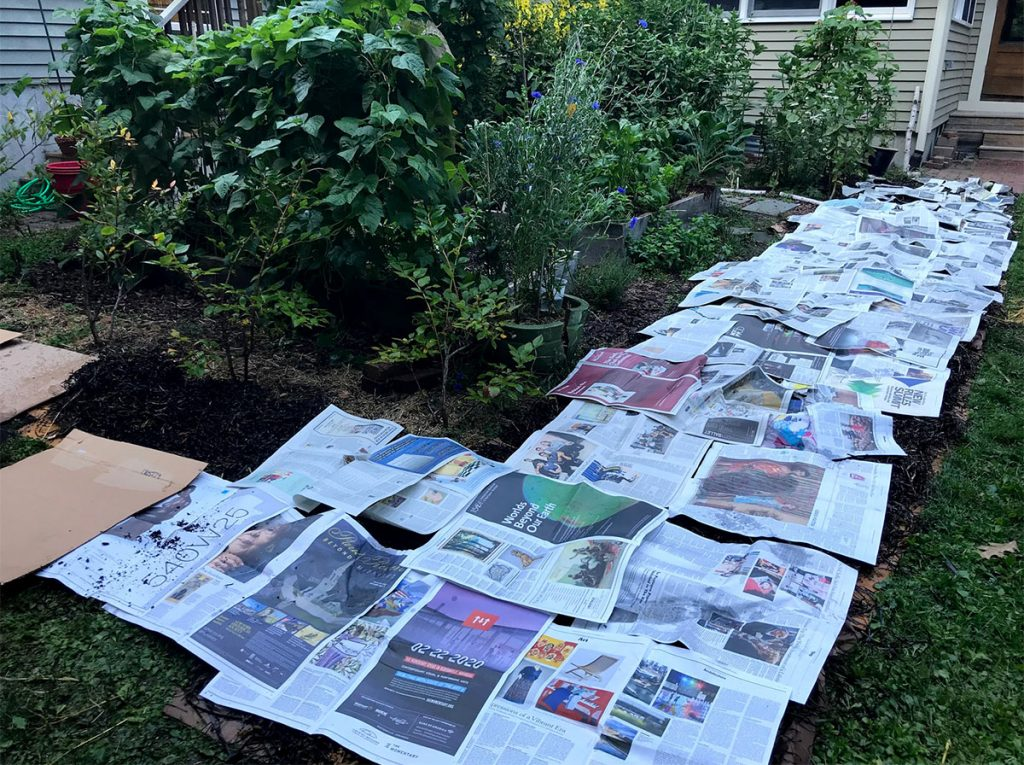 Garden area covered with cardboard and newspapers
