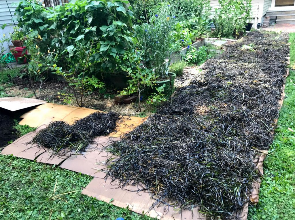 Brown compost layer