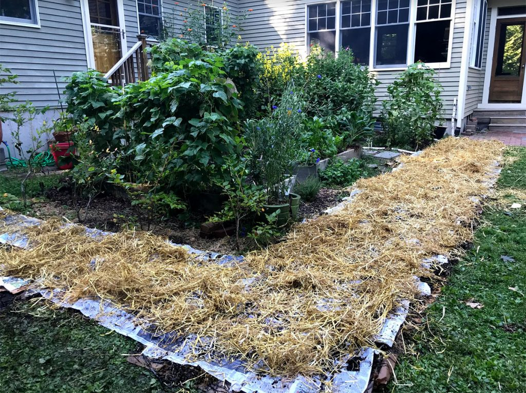 Multiple layers of compost and newspaperst
