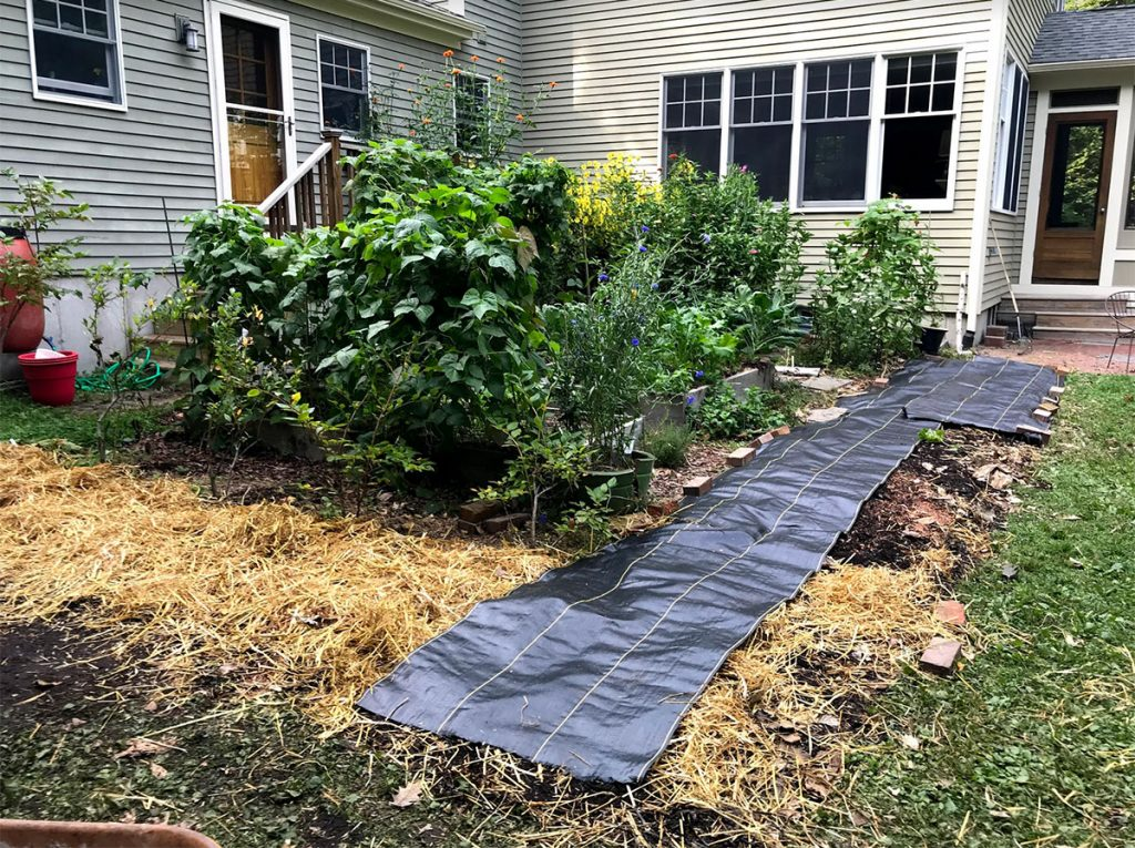 Garden bed covered with landscape fabric