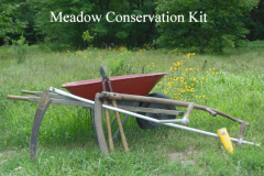 Scythes and loppers are excellent tools to manage the edges of meadows without the use of a bush-hog or other mechanical device.