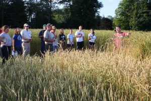 Tom Molloy discussing spelt variety performance with workshop participants.