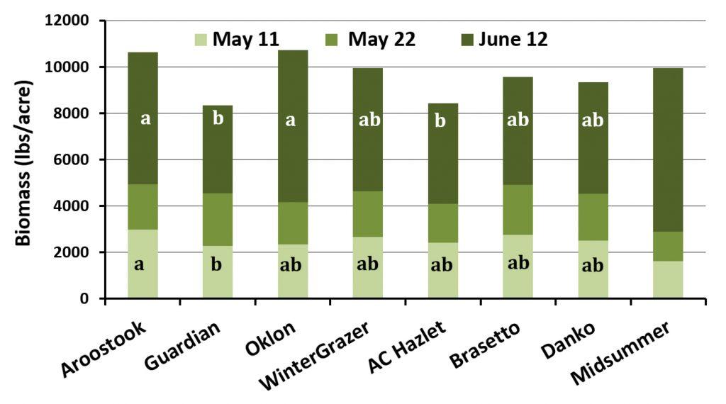 Bar chart showing Biomass (lbs/acre) totals: Aroostook = 10,000+; Guardian = 8,000+; Oklon = 10,000+; Winter Grazer = 10,000; AC Hazlet = 8,000+; Brasetto = 9,000+; Danko = 9,000+; and Midsummer = 10,000