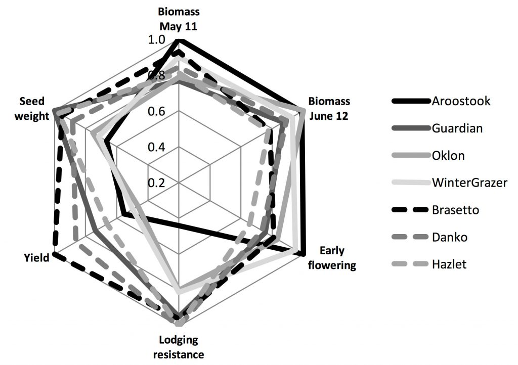 Star diagram shows characteristics (Biomass May 11; Biomass June 12; Early flowering; Lodging resistance; Yield; and seed weight) for Aroostook, Guardian, Oklon, WinterGrazer, Brasetto, Danko, and Hazlet varieties.