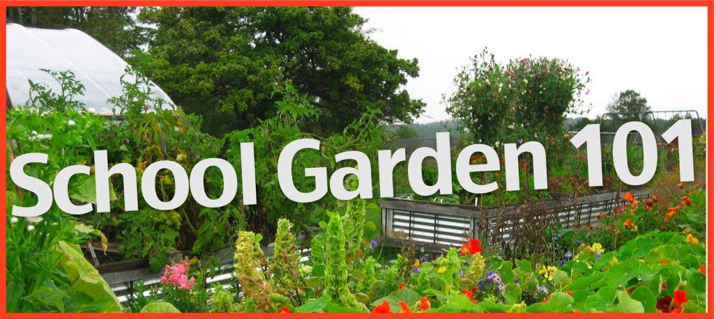 School Garden 101: garden with hoophouse
