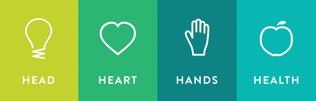 Head Heart Hands Health 4-H Icons