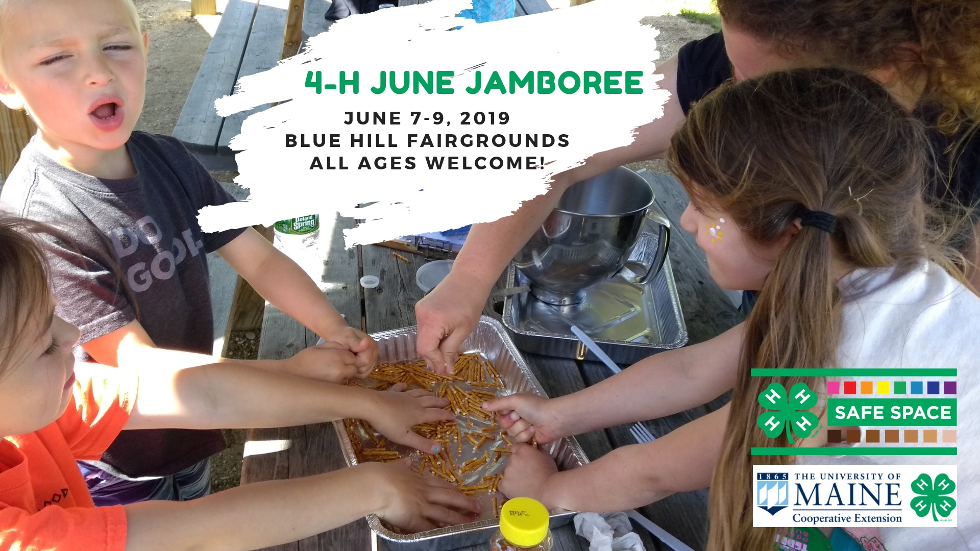 featured image for Registration is Open for 4-H June Jamboree
