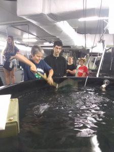 Aquaculture Internship 2019