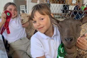 Presenting Goats at the Blue Hill Fair