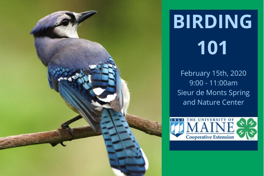 Birding 101 Event Photo