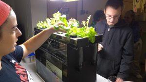 4-H'ers harvesting lettuce from Aquaponics tank