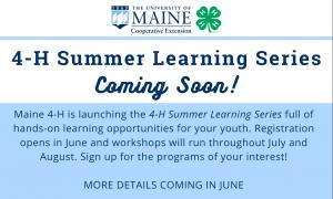Summer Learning Blurb
