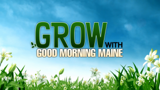 Grow with Good Morning Maine