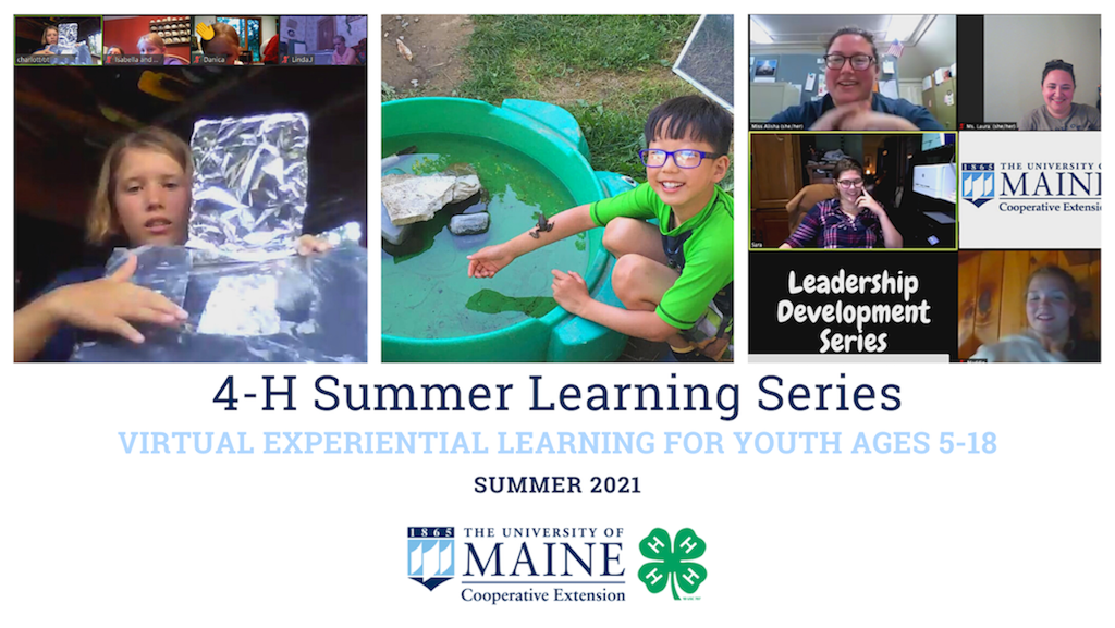 featured image for 4-H Summer Learning Series – Register Now!