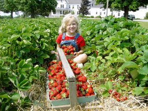 Girl with Quarts of Strawberries