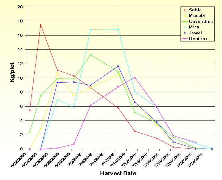 chart showing Kg/plot and harvest dates for Sable, Mesabi, Cavendish, Mira, Jewel, and Ovation
